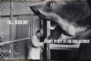 2014 BlueCat Screenplay Competition Fall Deadline