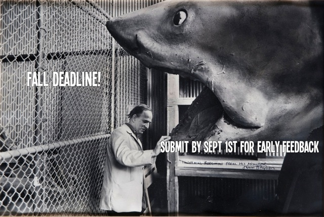 2014 BlueCat Screenplay Competition Fall Deadline: September 1st