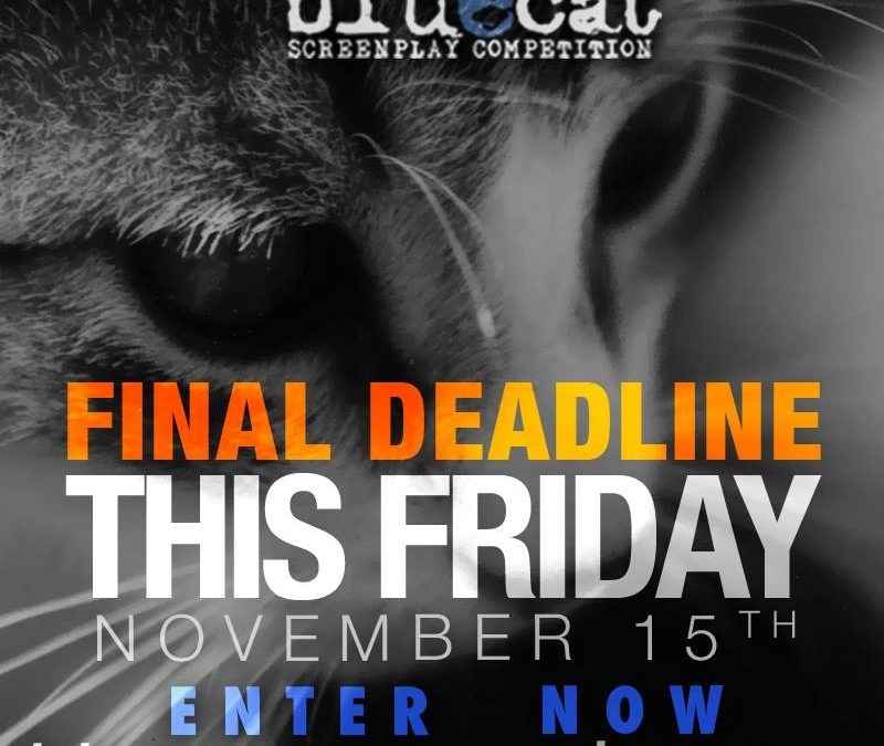 2014 Final Deadline: Friday, November 15th @ Midnight PST