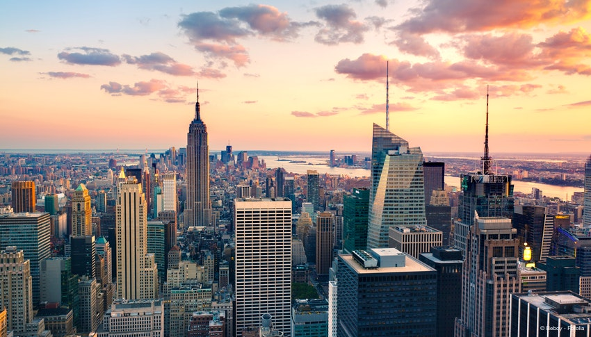 New York Script Consultations Dec. 7-9
