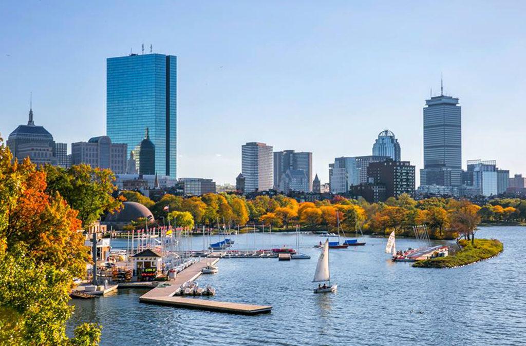Boston Script Consultations