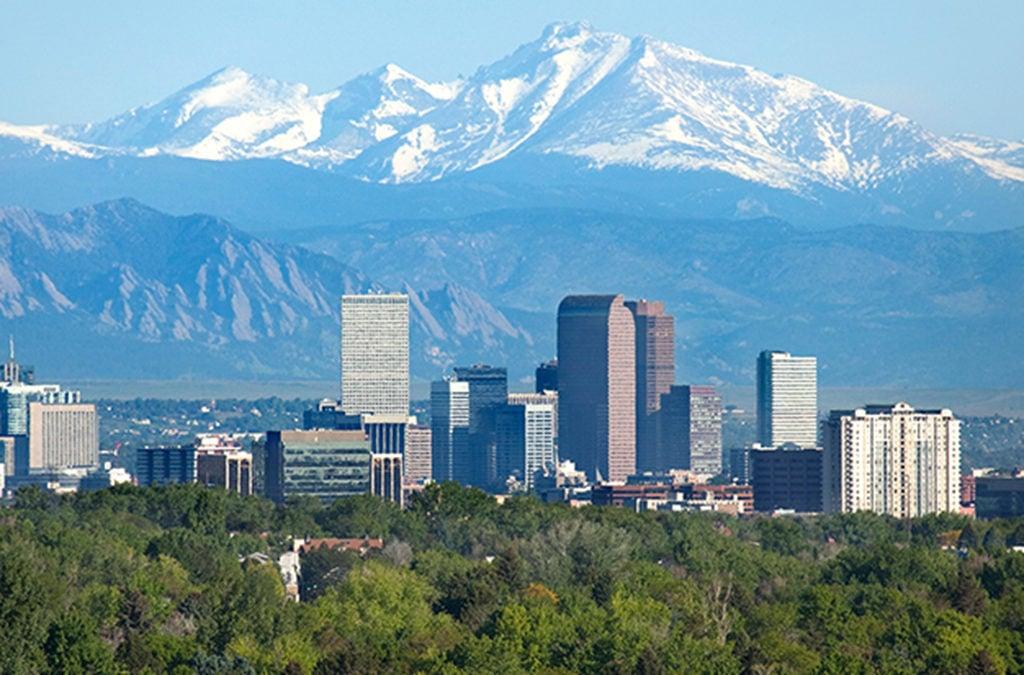Denver Script Consultations