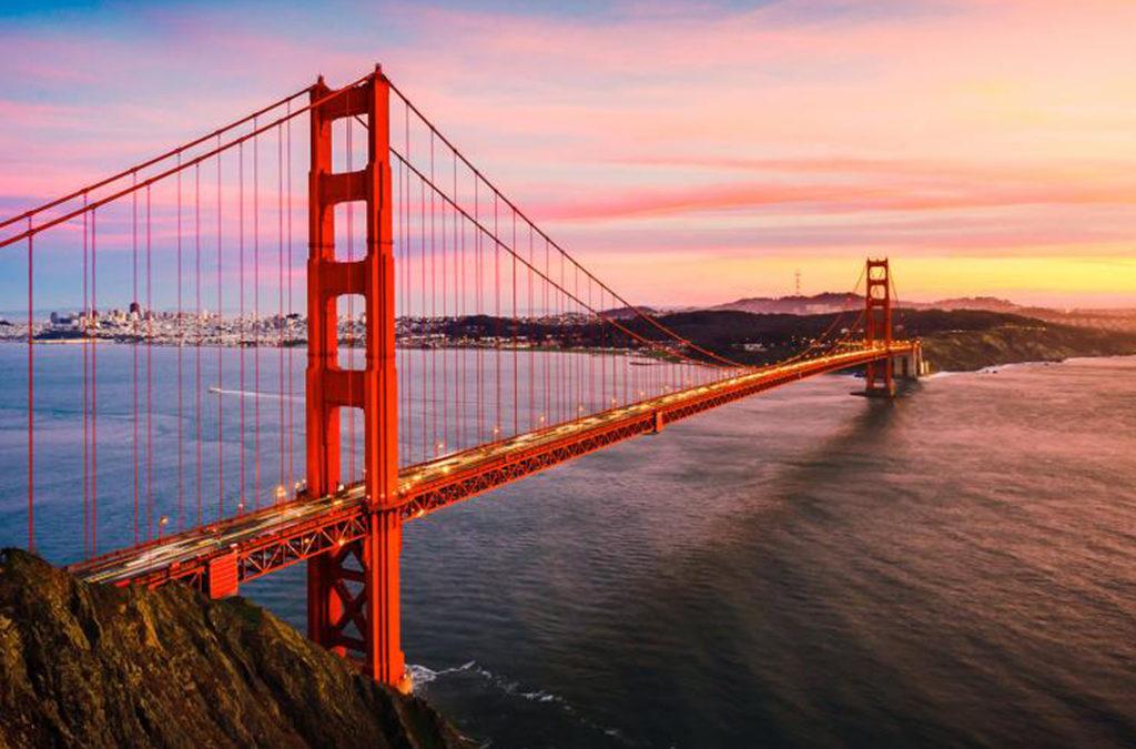 San Francisco Script Consultations