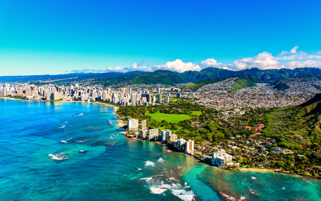 Honolulu Script Consultations